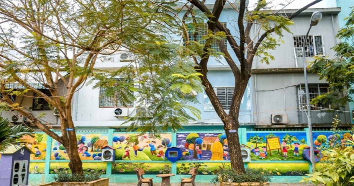 Bộ GD&ĐT yêu cầu rà soát toàn bộ cây xanh trong trường học