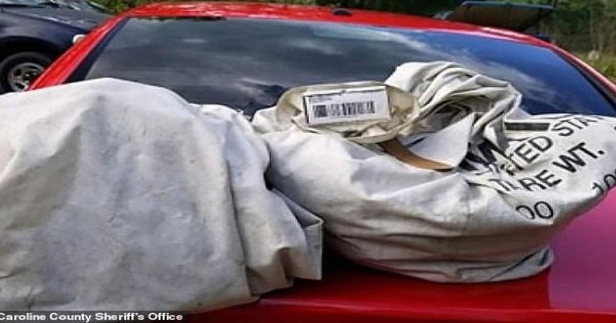 Dừng xe giữa đường để nhặt 2 túi rác, vô tình phát hiện cả một gia tài gần 1 triệu USD