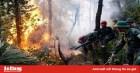 Nguy cơ cao hỏa hoạn, cháy rừng do nắng nóng kéo dài