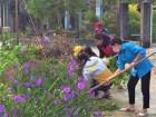 Quảng Nam: Những tuyến đường xanh 'made by thanh niên'
