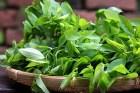 Ăn gì để không thiếu vitamin A?