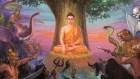 Người niệm Phật thì chẳng ma quỷ nào dám đến gần