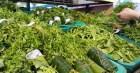 Các siêu thị, chợ ở Huế đã dùng lá chuối , túi giấy... để hạn chế túi ni lông