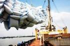 TS Nguyễn Đức Thành: Nên đánh thuế thay vì dừng xuất khẩu gạo