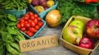 Đẩy mạnh hoàn thiện tiêu chuẩn hóa về phát triển nông nghiệp hữu cơ