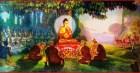 Những ngôn ngữ Đức Phật sử dụng khi thuyết pháp là gì?