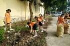 Hà Nội: Tìm diệt bọ gậy phòng chống sốt xuất huyết, không để dịch bùng phát