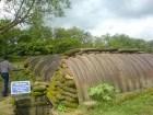 Mầm xanh bất diệt ở thung lũng Điện Biên