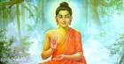 Lời Phật dạy về công ơn người mẹ khi mang thai