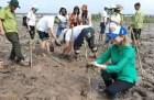 Nhân Ngày Môi trường thế giới (5/6): Khẩn cấp bảo vệ  đa dạng sinh học
