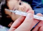 Cần chủ động diệt bọ gậy và diệt muỗi truyền bệnh sốt xuất huyết