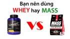 Tập thể hình nên dùng Whey hay Mass để tăng cân tăng cơ hiệu quả?