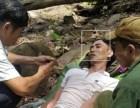 Cùng bố vợ vào rừng lấy mật, người đàn ông Quảng Bình bị ong đốt nguy kịch