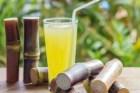 Nước mía trị thử nhiệt, viêm đường tiết niệu