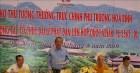 Phó Thủ tướng Trương Hòa Bình kiểm tra công tác chuẩn bị Đại lễ Vesak Liên hợp quốc 2019