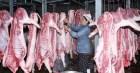 Giá thịt lợn hơi leo thang phi mã: Bộ NN&PTNT đồng ý phương án lần đầu tiên trong lịch sử