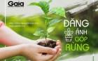 """Cư dân mạng đua nhau tham gia trào lưu mới """"Đăng ảnh góp rừng"""" phục hồi 50.000 m2 rừng nghèo kiệt!"""
