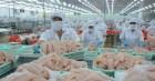 15,5 tỷ USD hàng nông lâm thủy sản Việt Nam xuất đi đâu trong thời dịch COVID-19?