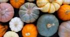 Những lợi ích sức khỏe từ quả bí ngô có thể bạn chưa biết