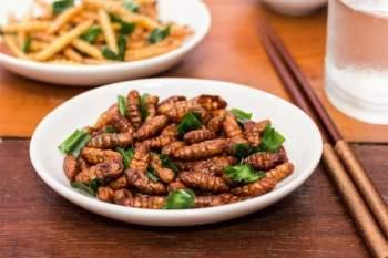 Ăn côn trùng: Dù nghe qua thôi đã khiến bạn sởn da gà, nhưng ăn côn trùng thực chất là một xu hướng dinh dưỡng lành mạnh. Nghiên cứu cho thấy dế rất giàu omega-3, omega-6 và vitamin B12. Không những vậy, dế còn chứa 69% protein và chứa cả 9 loại amino axit thiết yếu.