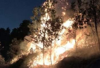 Hà Nội: Cháy lớn khu rừng ở Sóc Sơn, hàng trăm người nỗ lực dập lửa