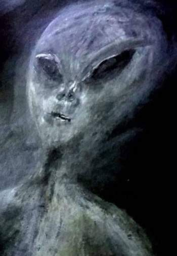Bức ảnh người ngoài hành tinh do bà Paula vẽ theo trí nhớ. Ảnh: Caters News.