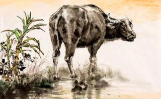 3 con giáp được thần tài săn đón, cuối năm vận trình hanh thông làm gì cũng thuận lợi - Ảnh 1