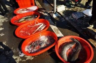 4 loại thịt cực kỳ độc hại gây bệnh tật nhưng rất phổ biến trên mâm cơm người Việt - Ảnh 2