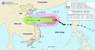 Bão số 8 đang hướng vào miền Trung, những tỉnh nào nằm trong tâm bão? - 1