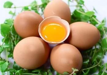 Bí quyết chọn trứng gà tươi ngon