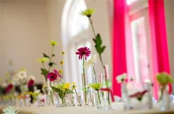 Hoa cúc là loài hoa tươi lâu nên rất thích hợp trồng trong nhà