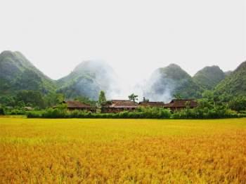 Trong thoang thoảng hương thơm của cánh đồng lúa chín, những câu hát Then, Sli cất lên, bồng bềnh trong làn khói lam chiều...