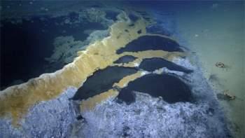 Phát hiện hồ nước 'tử thần' siêu mặn dưới đáy sâu vịnh Mexico - 2