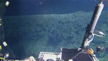 Phát hiện hồ nước 'tử thần' siêu mặn dưới đáy sâu vịnh Mexico - 3