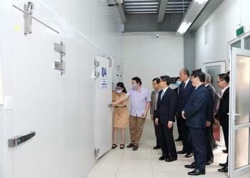 COVAX Facility se cung cap them 3,3 trieu lieu vaccine cho Viet Nam hinh anh 1