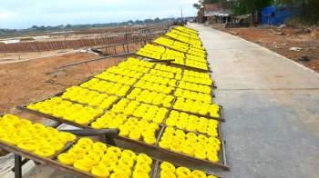 Các làng nghề ở Bình Định tất bật vào vụ Tết8