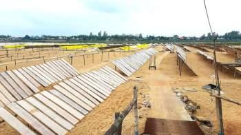 Các làng nghề ở Bình Định tất bật vào vụ Tết9