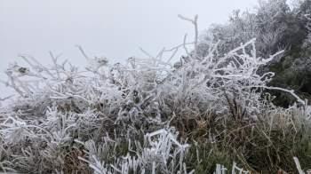 Cận cảnh băng giá ở Cao Bằng, Lạng Sơn trong giá lạnh dưới 0 độ C  - 5