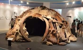 Mô hình ngôi nhà cổ đại bằng xương voi Ma mút. Nguồn: Pinterest