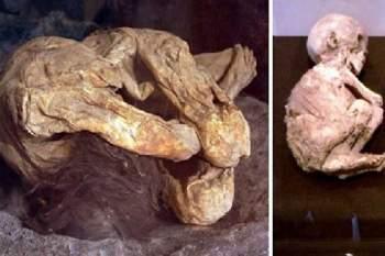 Hai xác ướp cổ xưa bí ẩn được phát hiện trong thùng carton bên trong một nhà xe ở California.