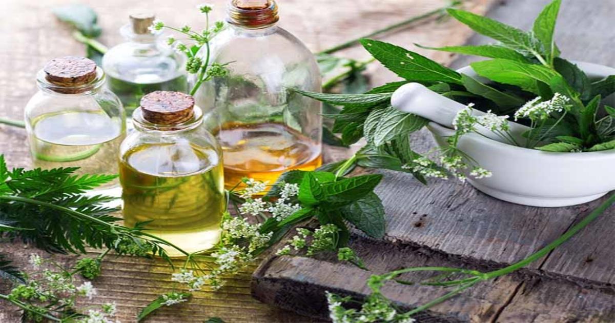 5 Cách chữa vôi hóa cột sống bằng thuốc nam quanh nhà