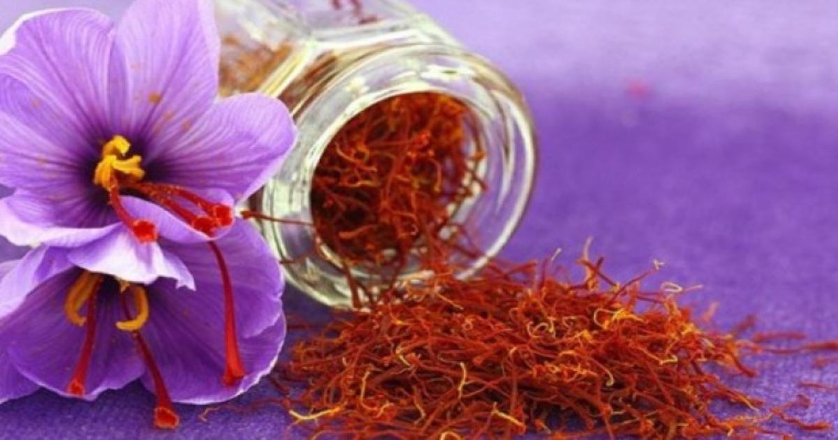 Những công dụng tuyệt vời của nhụy hoa nghệ tây Saffron với sức khỏe và sắc đẹp
