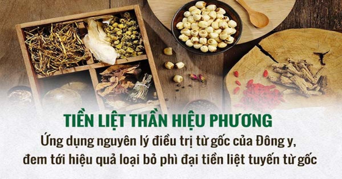 Hành trình tìm ra bài thuốc Tiền liệt Thần hiệu phương qua lời kể của bác sĩ Lê Hữu Tuấn