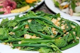Không chỉ là vị thuốc quý, 4 loại rau này còn khiến cả người không thích ăn rau tìm mua bằng được