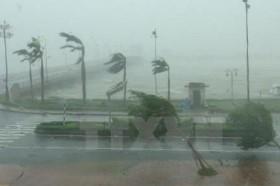 Dự báo thời tiết ngày 24/10, Bắc Trung bộ có mưa vừa, mưa to về đêm