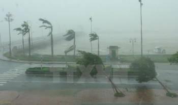 Áp thấp nhiệt đới di chuyển theo hướng Tây Tây Bắc và có khả năng mạnh thêm