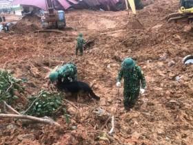 Tìm thấy 3 thi thể cuối cùng trong số 22 cán bộ, chiến sĩ bị sạt lở núi vùi lấp ở Quảng Trị