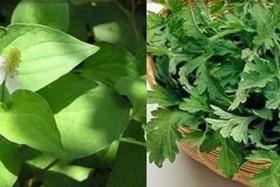 2 loại rau bán rẻ bèo ở chợ lại là vị thuốc quý giúp điều hòa kinh nguyệt