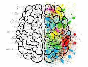 Phương pháp độc đáo ngăn ngừa các bệnh về não