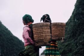 Những phụ nữ người Mông cõng nguồn sống trên lưng